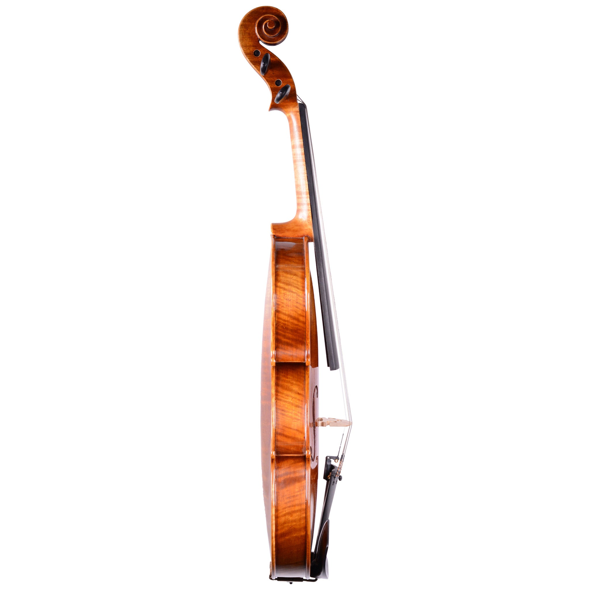 Holstein Traditional Cannone Violin