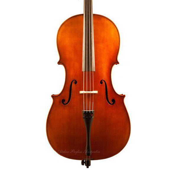Scott Cao 017E Cello