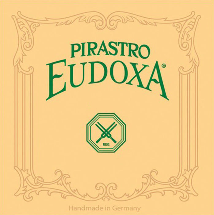 Eudoxa Violin D Rigid
