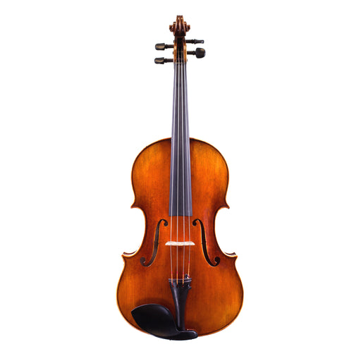 Holstein Traditional Panette Viola