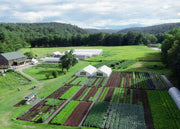 Puzzle - Neversink Farm From Above