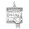 Masters Degree Sterling Silver Charm - deelytes-com