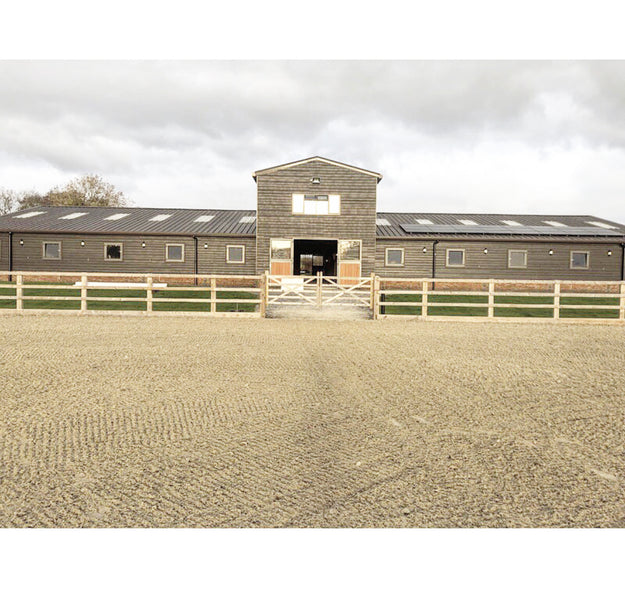 Bella Rose Ponies Visit Little London Stud