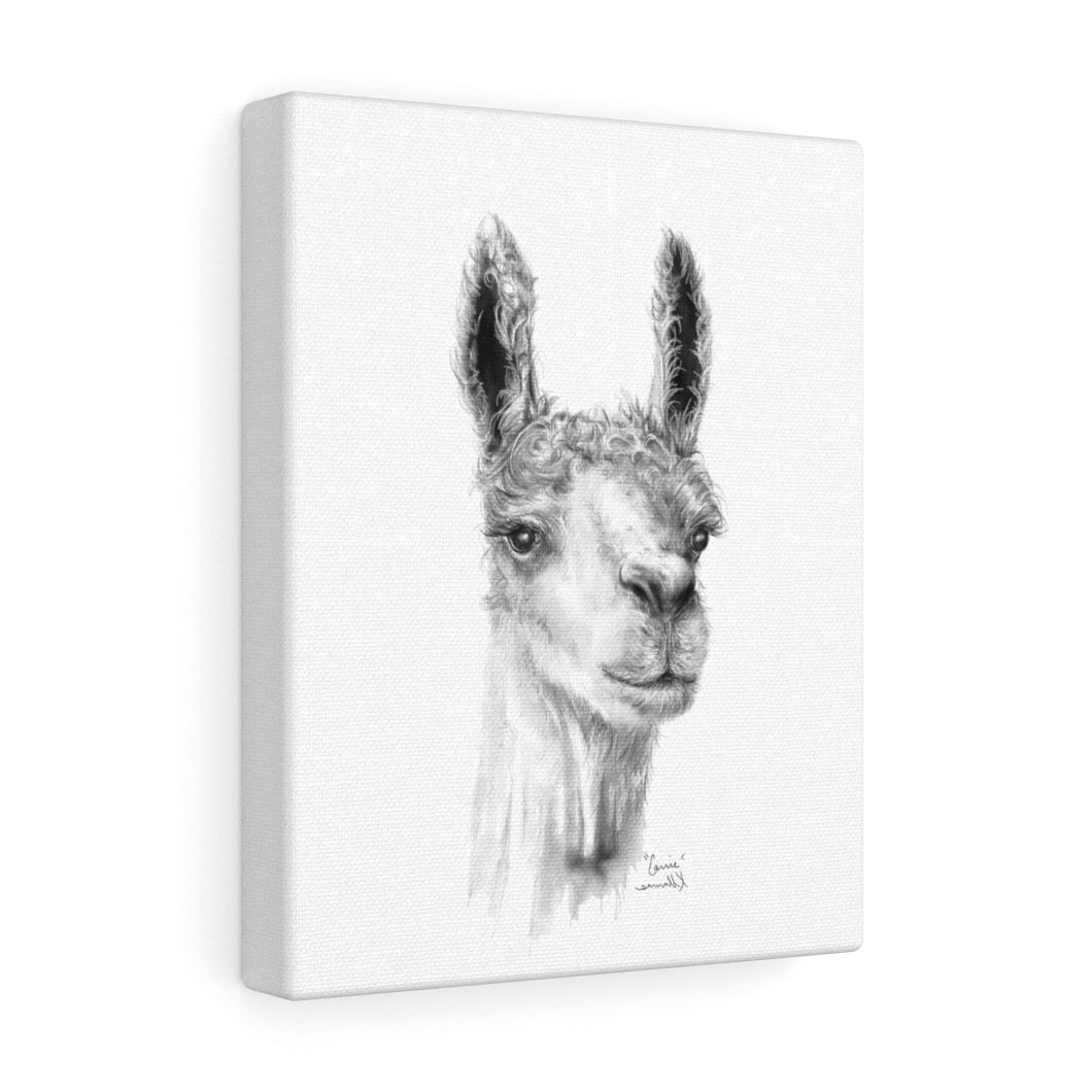 CARRIE Llama - Art Canvas
