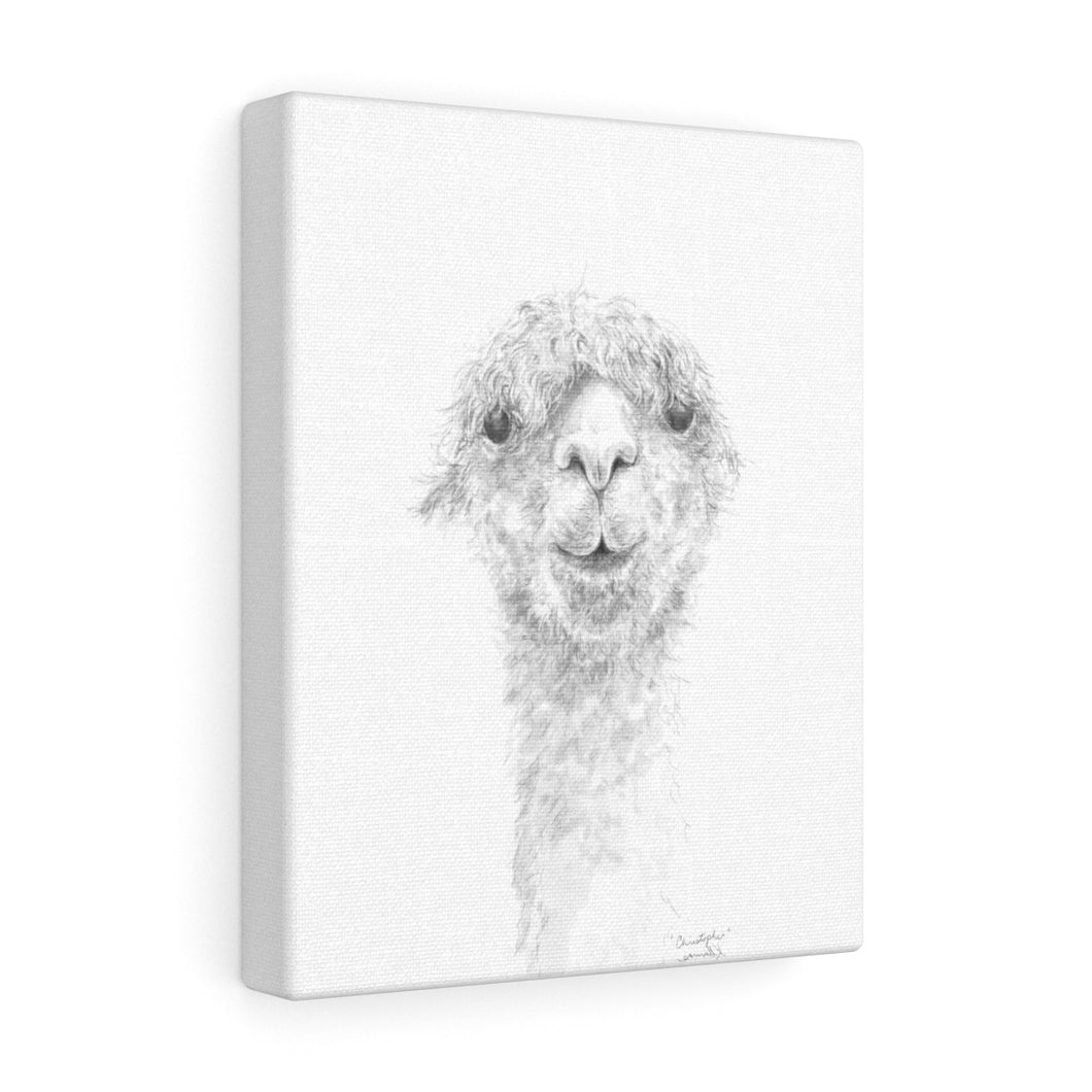 CHRISTOPHER Llama - Art Canvas