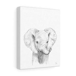 Amos Elephant - Animal Art Canvas