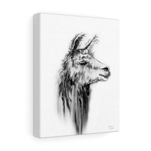 CATHERINE Llama - Art Canvas