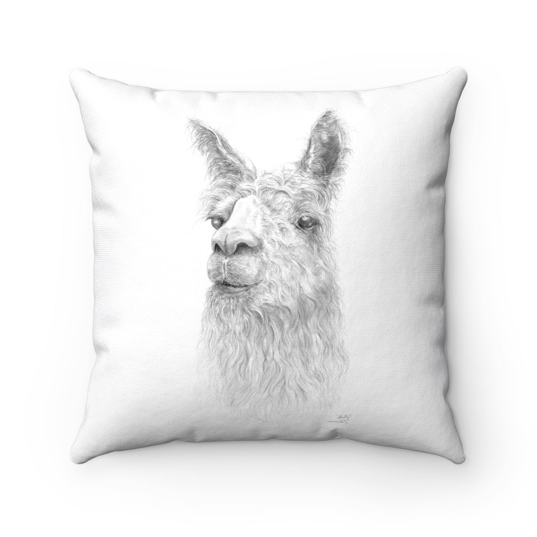 Llama Pillow - SHELLY