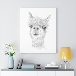 DAKOTA Llama - Art Canvas