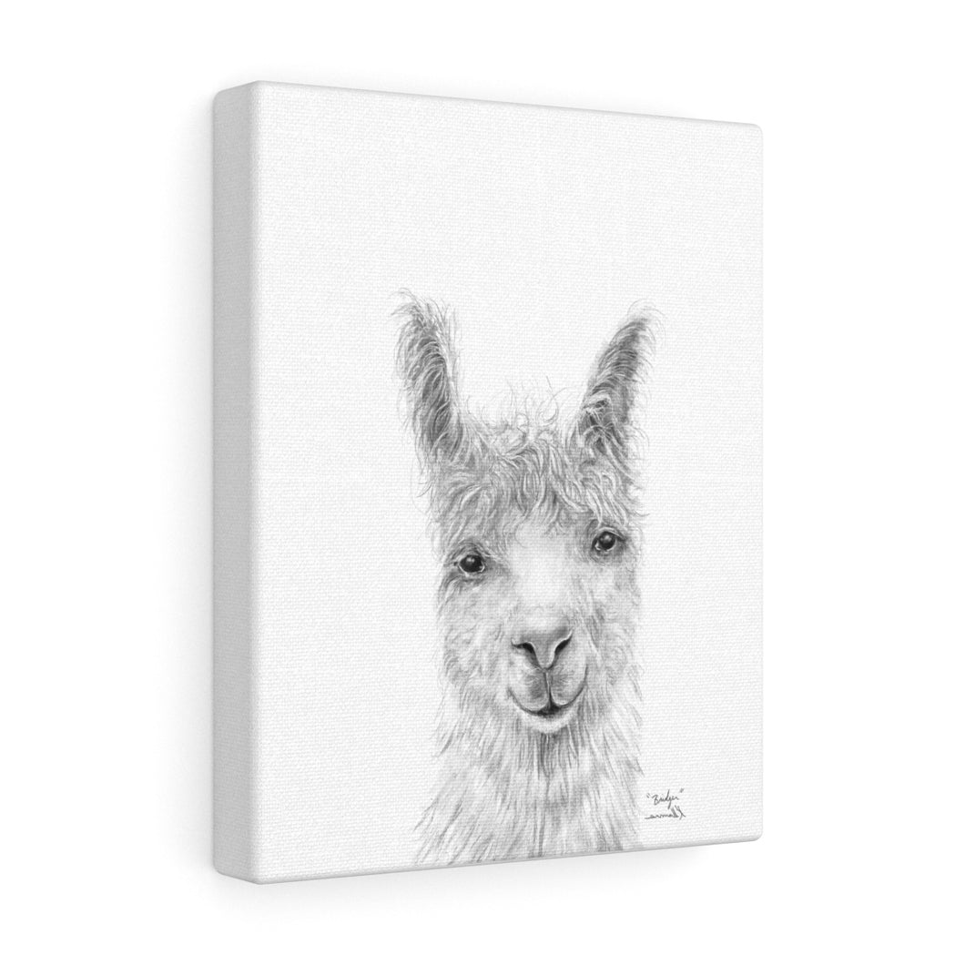 BRIDGER Llama - Art Canvas