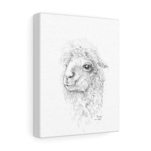Mandy Llama - Art Canvas