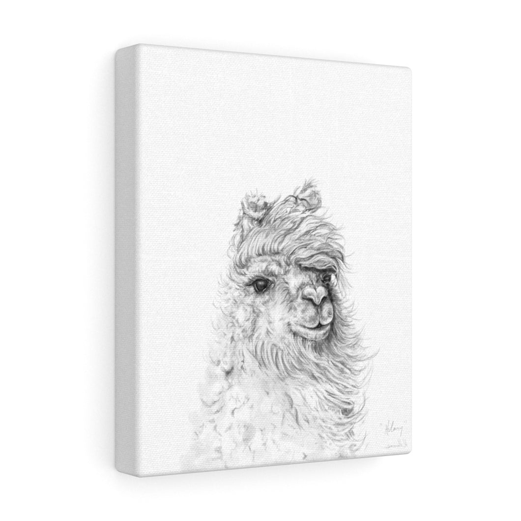 HILARY Llama - Art Canvas