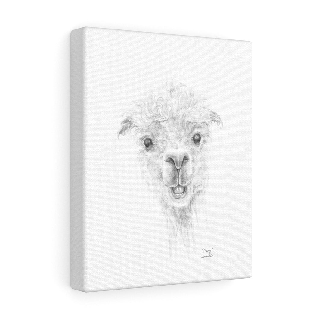 GEORGE Llama - Art Canvas
