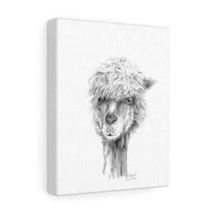 MICHAEL Llama - Art Canvas