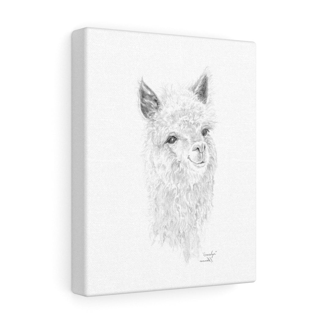 Gracelyn Llama - Art Canvas