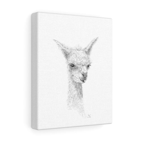 ALICE Llama - Art Canvas