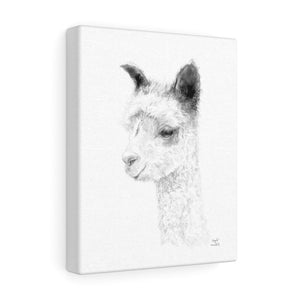 ANGELA Llama - Art Canvas