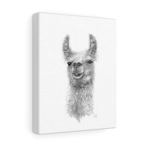 CRYSTAL Llama - Art Canvas