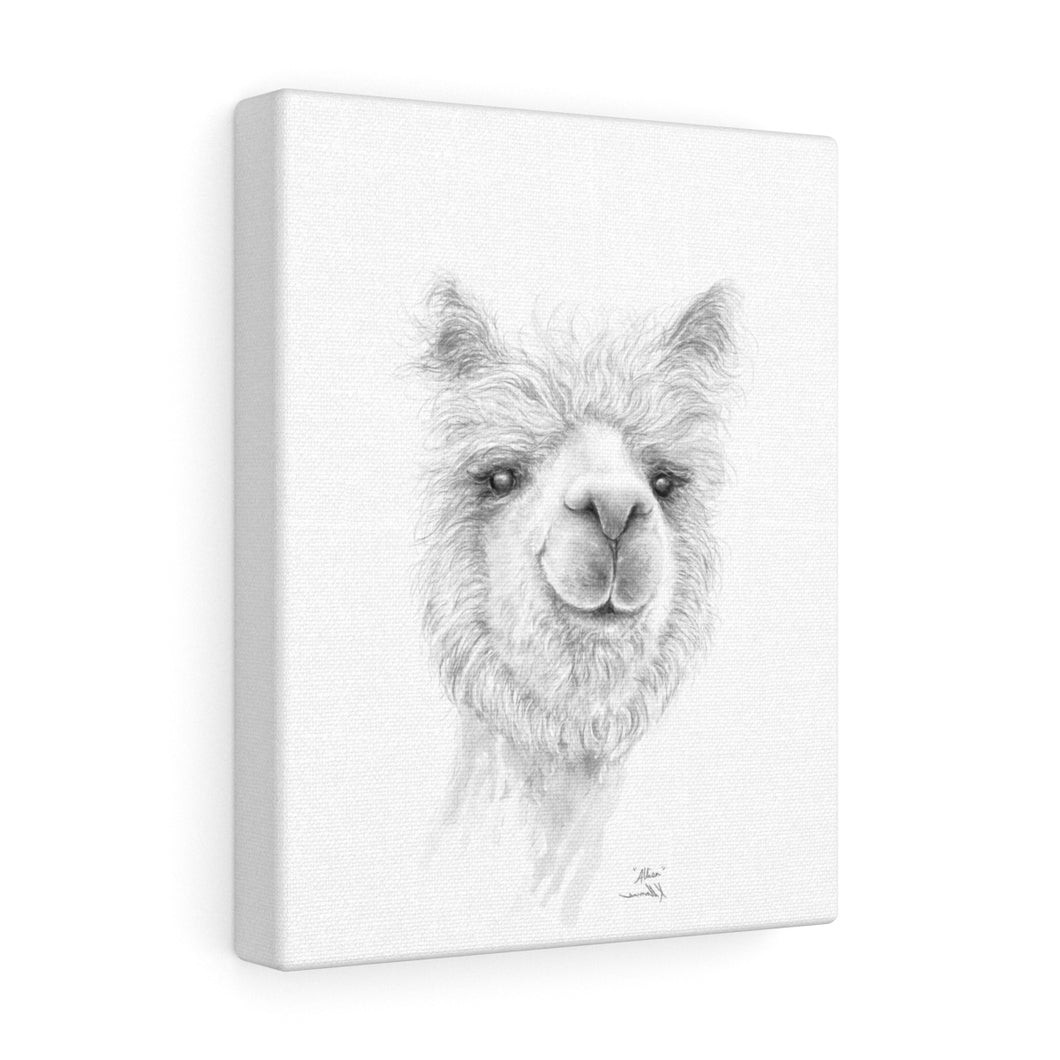 ALLISA Llama - Art Canvas