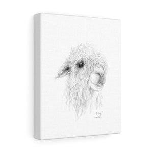 RYLEY Llama - Art Canvas