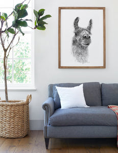 Living room art llama picture framed with gray couch