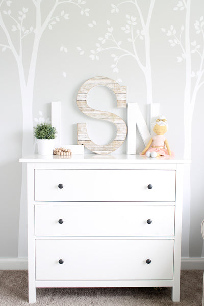 Adorable girl's room woodland theme nursery with the monogram initials LSN.