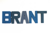 Brant name sign in different shades of blue.