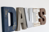 Davis rustic letters in navy, beiges, and browns.