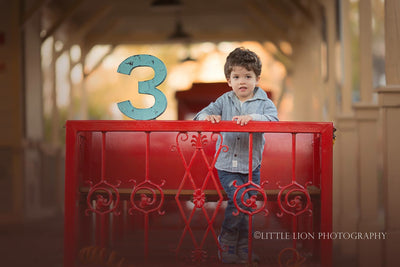 Picture of little boy on a train with number 3 for birthday photo prop