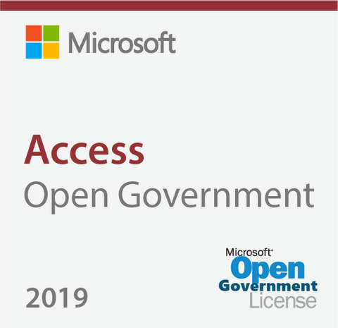 Microsoft Access 2019 Open Government