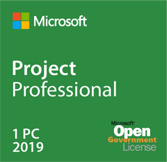Microsoft Project Professional 2019 Open Government