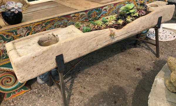Antique Indonesian old growth teak rice paste making trough converted into a planter box - Impact Imports