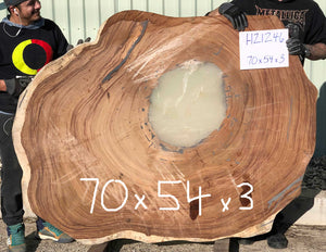 Jumbo large size cookie shaped natural live edge cross cut Monkeypod Cenicero Parota Guanacaste wood slab for dining or conference table at Impact Imports in Boise Idaho.