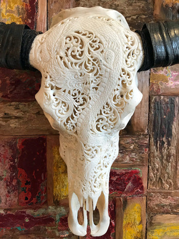 An intricately hand carved water buffalo skull with a very detailed dragon design and real horns for complete skull carved art bliss