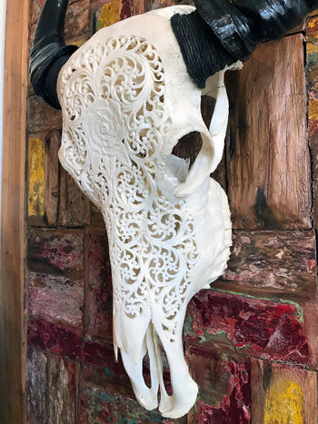 Hand Carved Water Buffalo Skull, Flower Design - Impact Imports
