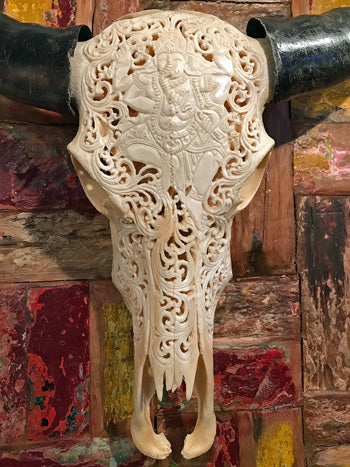 A hand carved water buffalo skull with a Ganesha or Ganesh design and real horns for complete skull carved art bliss