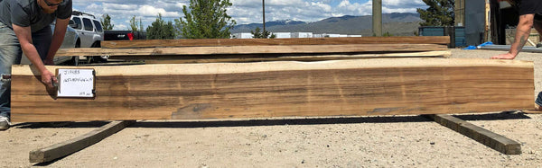 Sustainably Harvested Kiln Dried Natural live edge monkeypod or parota extra large long bar or conference table top from Impact Imports in Boise Idaho.