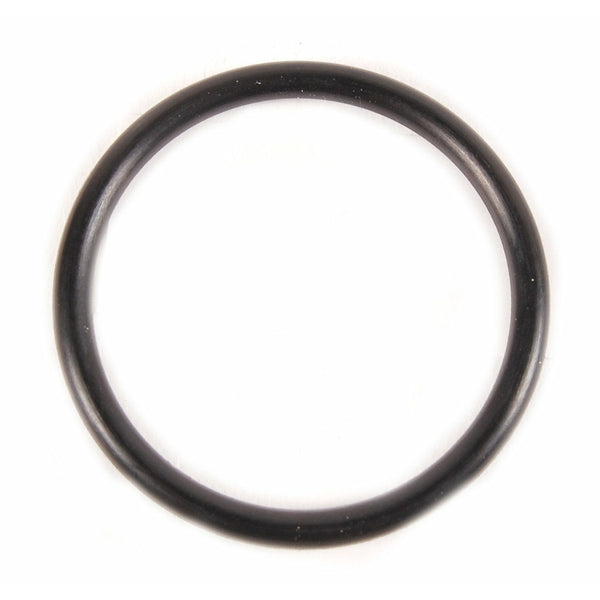 Evinrude Thermostat Cover O-Ring 0301917