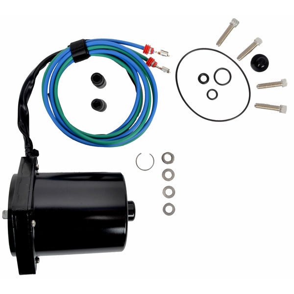 Evinrude Tilt Trim Motor And O-Ring Assembly 5006319
