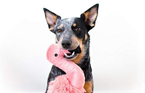 Lola Flamingo Plush Toy - Bancroft Pet Shop