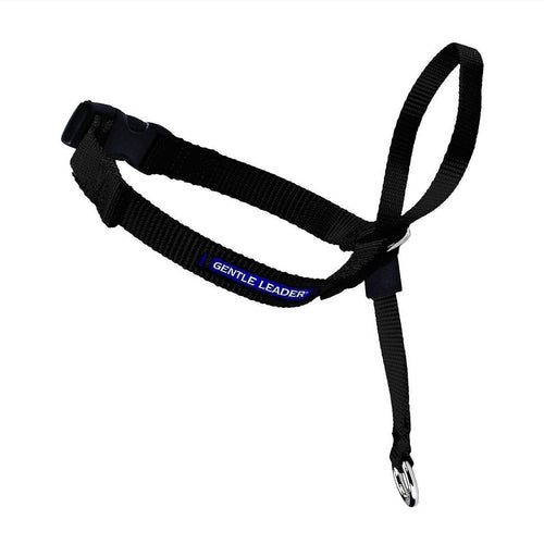 Gentle Leader Headcollar - Bancroft Pet Shop