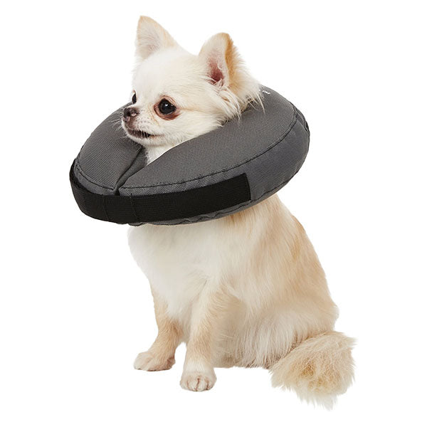 Inflatable Recovery Collar | ZenPet