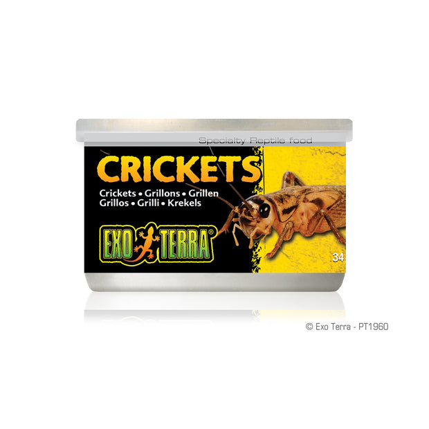 Canned Crickets 1.2oz