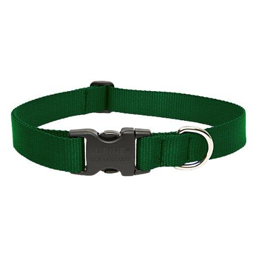 Green Collar | Lupine