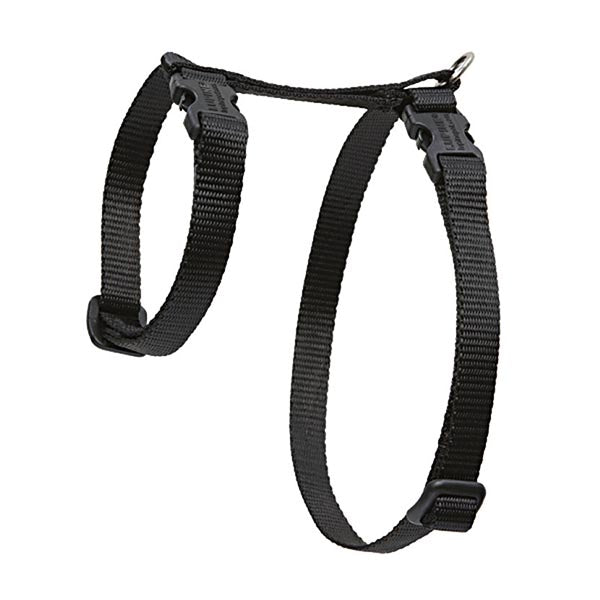 Black Cat H-Harness | Lupine
