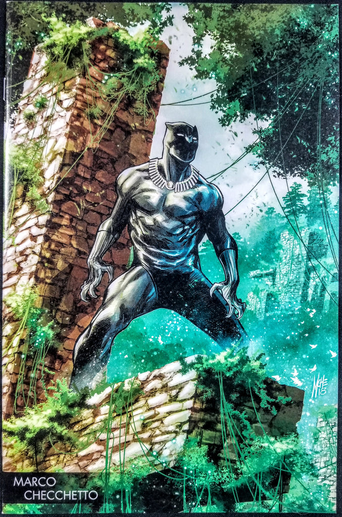 Black Panther #170 (Marvel, 2018) Marco Checchetto Young Guns Variant (SOLD OUT)