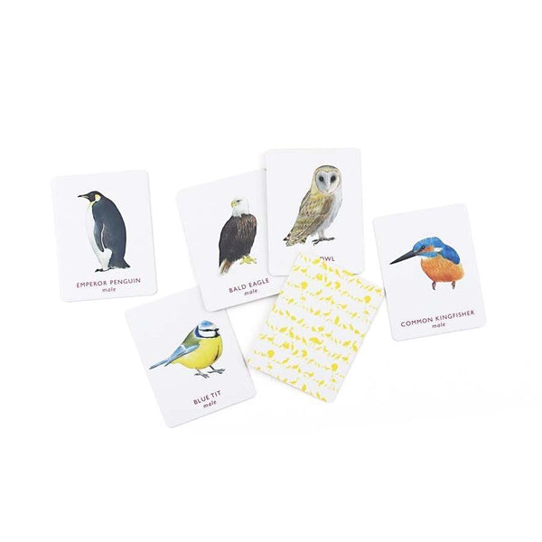 Laurence King Match a Pair of Birds Memory Game