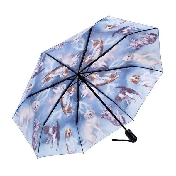 Midoco.ca: Galleria Folding Umbrella Cats & Dogs