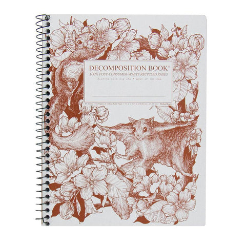 MIDOCO.CA: DECOMPOSITION NOTEBOOK-SQUIRRELS