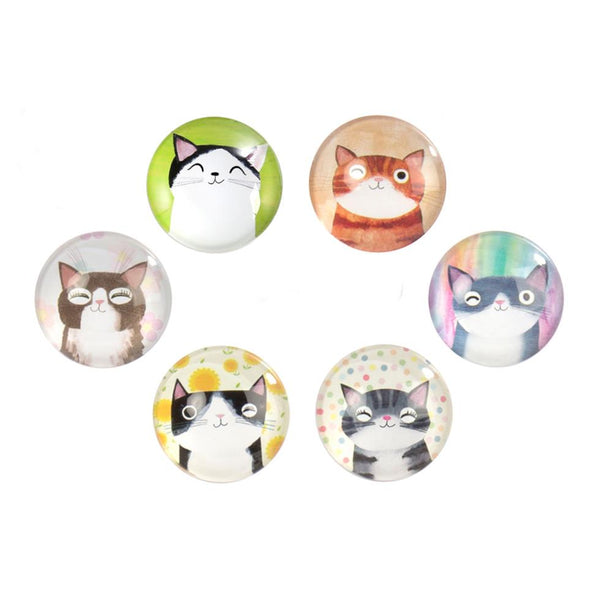 CTG Cute Cat Magnets (Assorted)